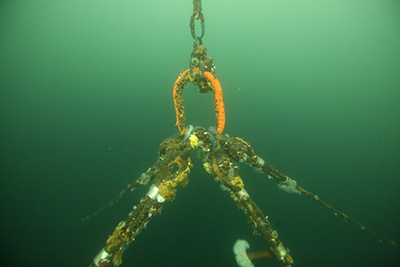 Underwater chains and shackles