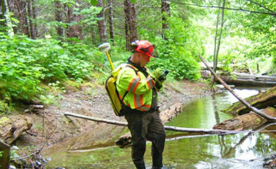 Biological consultant standing in water in forest